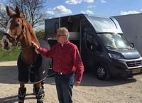 International Horse Transport & Horse Taxi